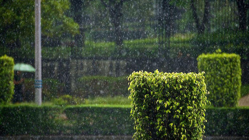 lluvia-noche