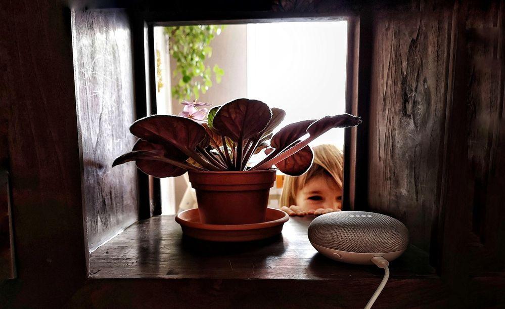 Niños en casa, ¡que no cunda el pánico! Fuente: La Rama Digital (https://www.laramadigital.com/google-home-ninos/)