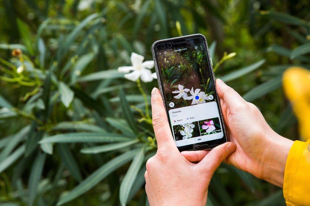 ¿Conocías lo útil que puede ser Google Lens? Fuente: El Blog de Google (https://www.blog.google/products/maps/let-google-be-your-holiday-travel-tour-guide/)